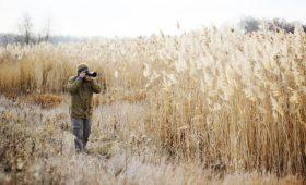 Telephoto Lens for Landscapes